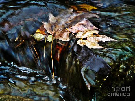 Swept Away by Chris Sotiriadis