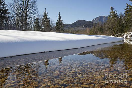 Erin Paul Donovan - Swift River - Albany New Hampshire USA