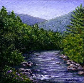 Swift River by Sandra Estes
