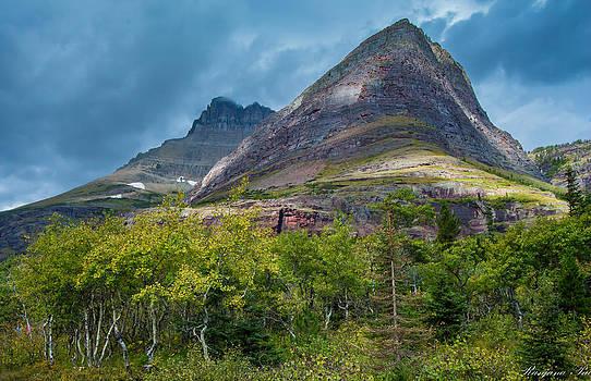 Swiftcurrent Mountains by Ranjana Pai