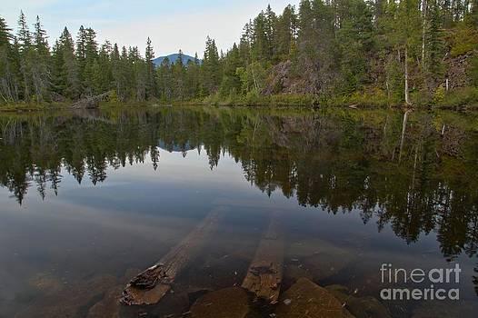 Adam Jewell - Swim Lake