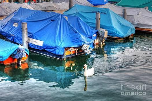 Ines Bolasini - Swimming at lake Zurich