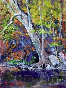 Swimming Hole by Bruce Schrader