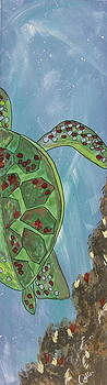 Marcia Weller-Wenbert - Swimming with the Turtles