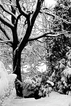 Linda Rae Cuthbertson - Swing Into Winter