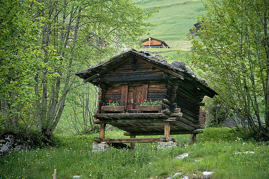 Matt Swinden - Swiss Cabin