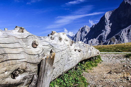 Switzerland Landscape by Mina Isaac