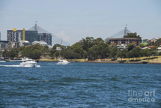 Bob Phillips - Sydney Harbour and ANZAC Bridge