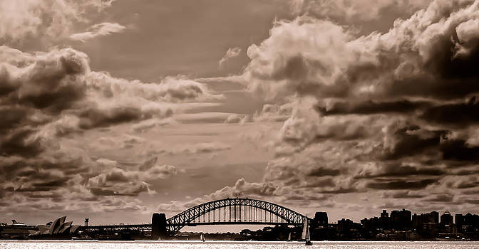 Sydney Harbour - Bronze by Jamian Stayt