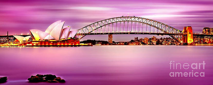 Sydney Harbour Pink Sunset by Az Jackson