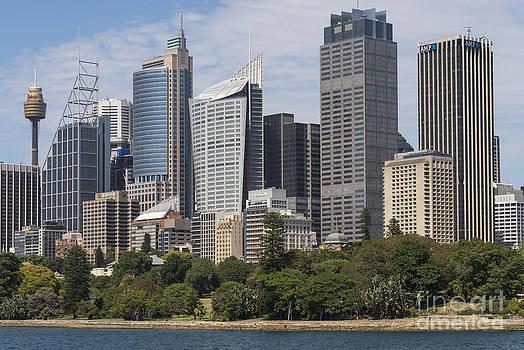 Bob Phillips - Sydney Tower and Skyline One
