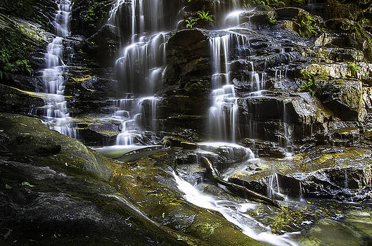 Sylvia Falls Close by Tony Heyward