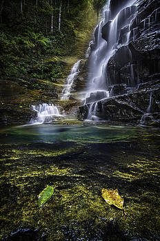 Sylvia Falls by Tony Heyward