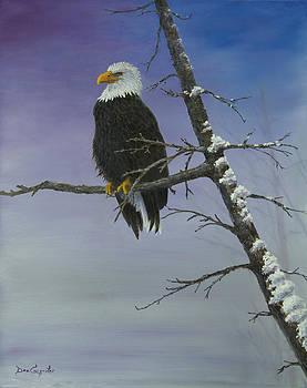 Dee Carpenter - Symbol of Freedom