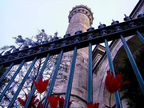 Symbols of Istanbul by Zafer Gurel