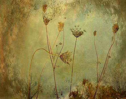 Gothicrow Images - Symphony Of Nature