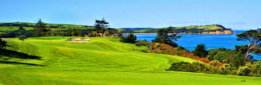 Ta Moko Gulf Harbour Country Club by Stan Sutherland