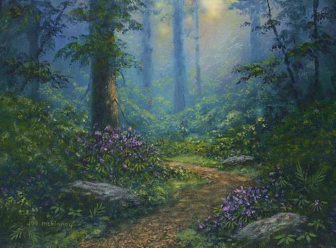 Table Rock Trail by Joe Mckinney