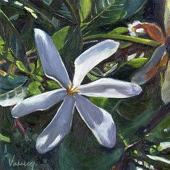 Stacy Vosberg - Tahitian Gardenia