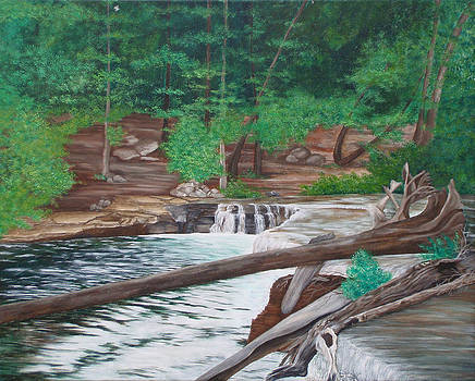 Tahquamenon Falls by Brandy Gerber