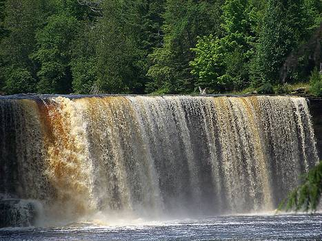 Tahquamenon Upper Falls2 by Jennifer  King