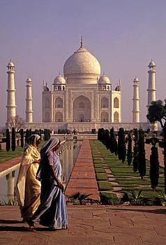 Dennis Cox - Taj Mahal 1
