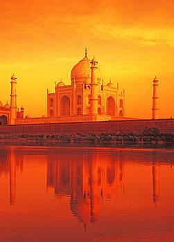 Dennis Cox - Taj Mahal 4