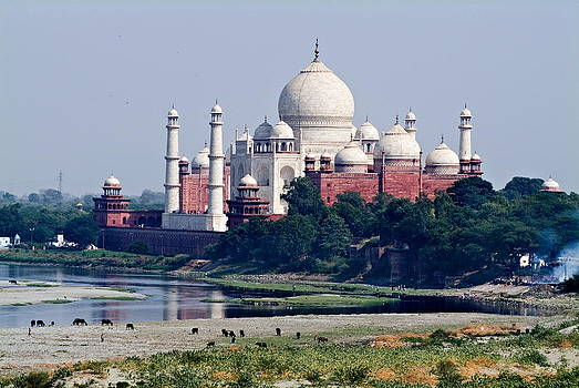 Devinder Sangha - Taj Mahal and Ganges