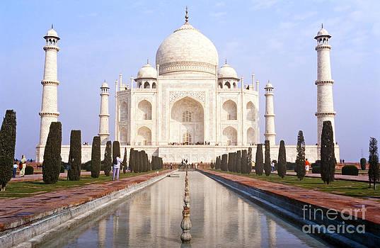 Tim Hester - Taj Mahal