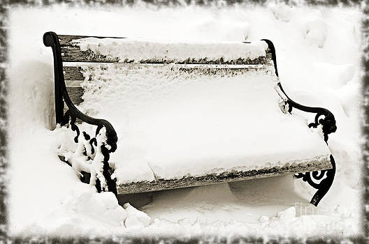 Andee Design - Take A Seat  And Chill Out - Park Bench - Winter - Snow Storm BW 2