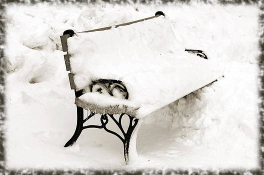 Andee Design - Take A Seat  And Chill Out - Park Bench - Winter - Snow Storm BW