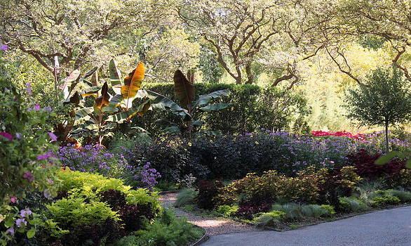 Rosanne Jordan - Take the Summer Garden Walk
