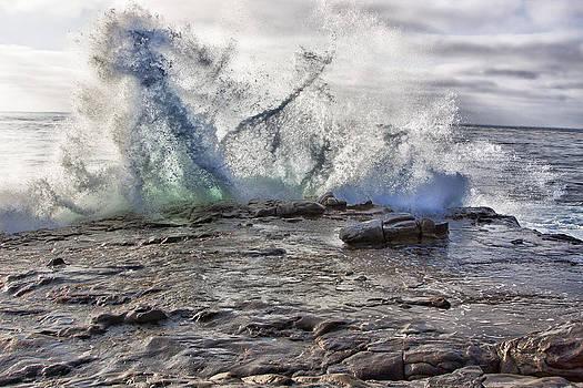 Taken By The Sea by Mike Trueblood