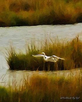 Takeoff by Melody McBride
