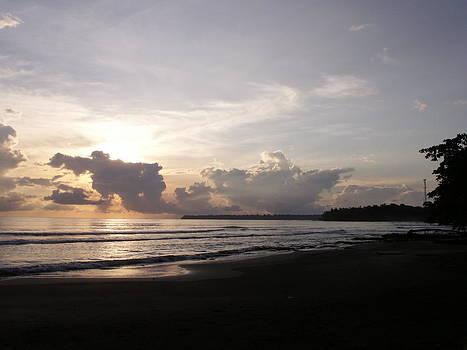 Talamanca Coast by Carol Cabler