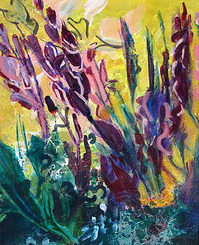 Betty Pieper - Tall Purple Blooms and Green Foliage