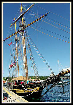 Gail Matthews - Tall Ship Pride of Baltimore II