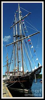 Gail Matthews - Tall Ship The Peacemaker