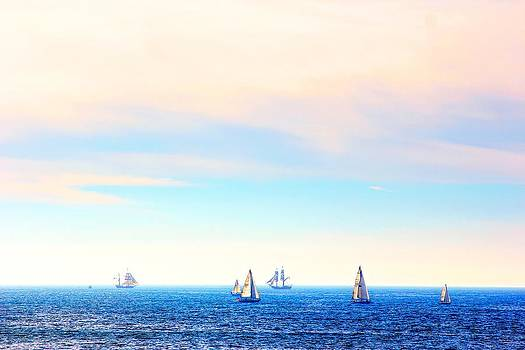 Tall Ships and Sail Boats by Liz Vernand