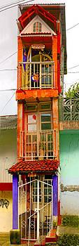 Tall Thin House - Colors of Mexico by Nabila Khanam