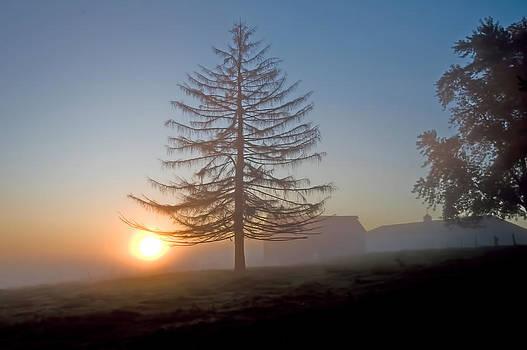 Tamarac Dawn by Ray Summers Photography