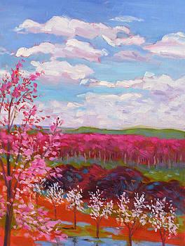 Tamara's View by Rhett Regina Owings