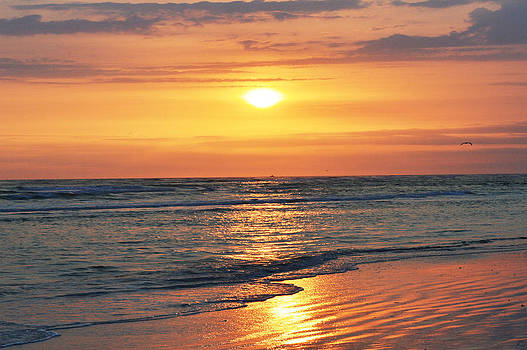 Tangerine Burst Sunset by Sherry Allen