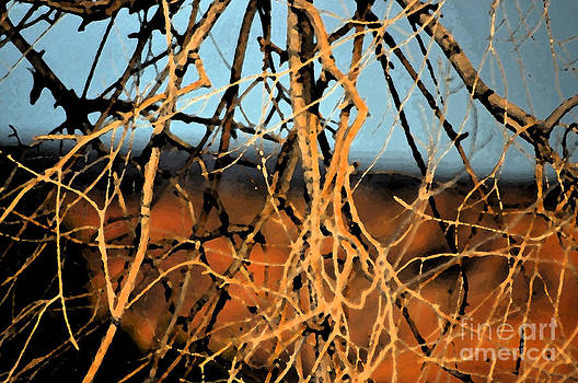 Tangled  by Juls Adams