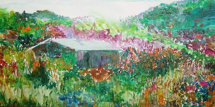 Taos Barn by Phoenix Simpson