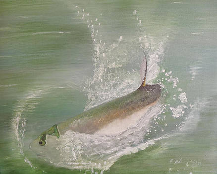Tarpon Breaking Water by Tony Rodriguez