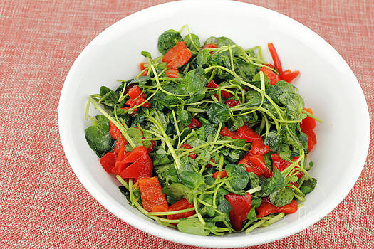 Tasty Watercress Salad by Lee Serenethos