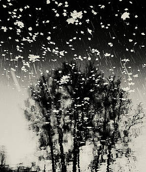 tathata #12NULLUS2 by Alex Zhul