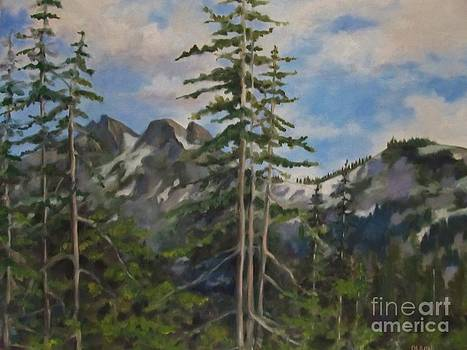 Tatoosh Mountains in Cascades by Karen Olson