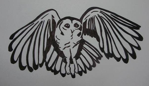 Tawny Owl Graphic by Joann Renner